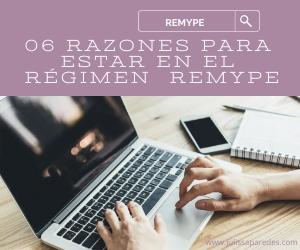 REGIMEN REMYPE